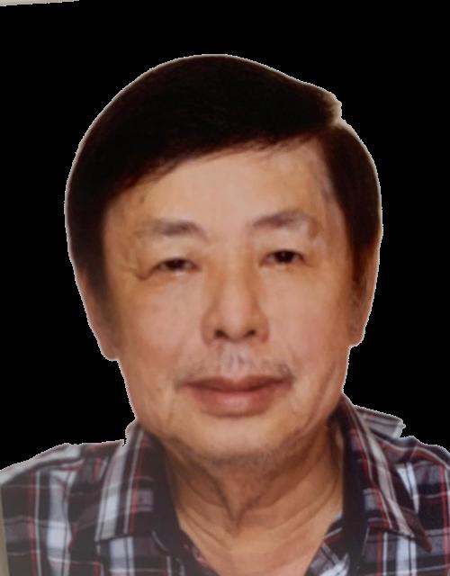 Lam Kim Ann 藍金安